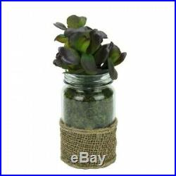 Artificial Potted Jade Succulent Plant in Glass Jar with Burlap Grip 19cm