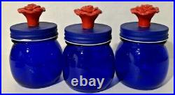 Lot of 3 New The Pioneer Woman Small Blue Storage Jar with Red Rose Screw On Lid