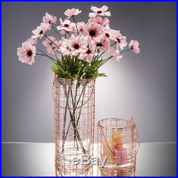 Modern Glass Vase Bottle Rose Pink Iron Wire Handle Straight Ornaments Water Jar