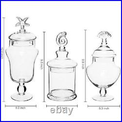 Seashell Handle Clear Glass Apothecary Food Storage Jars/Decorative Centerpieces